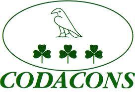 codacons1.jpg radio bussola 24