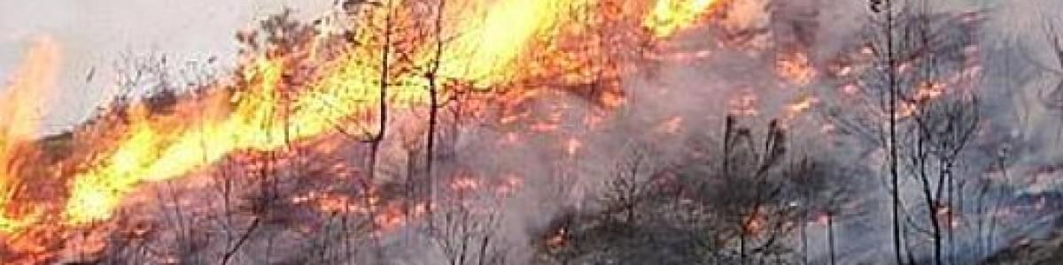 Alte temperature e incendi: fiamme a Mercato San Severino