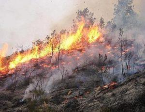 incendio-fiamme-alte_01