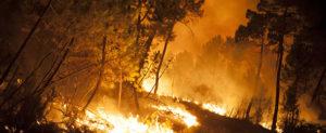 SPAIN-FIRE
