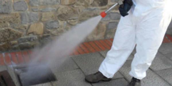 Salerno: invasione di blatte e ratti, scatta l'allarme igienico in via Balzico