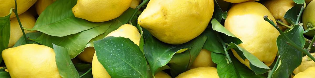 Festa del Limone a Dragonea, il prossimo weekend