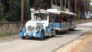 trenino turistico paestum radiobussola