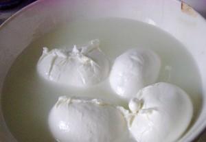 Mozzarella (1)