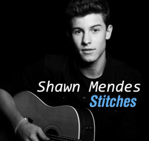 Shaw Mendes - Stitches