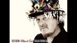 ZUCCHERO BLACK CAT