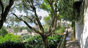 giardino-della-minerva-salerno-b