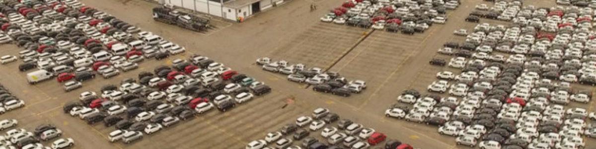 Auto in conto vendita commercializzate illegalmente, 5 arresti nel Cilento
