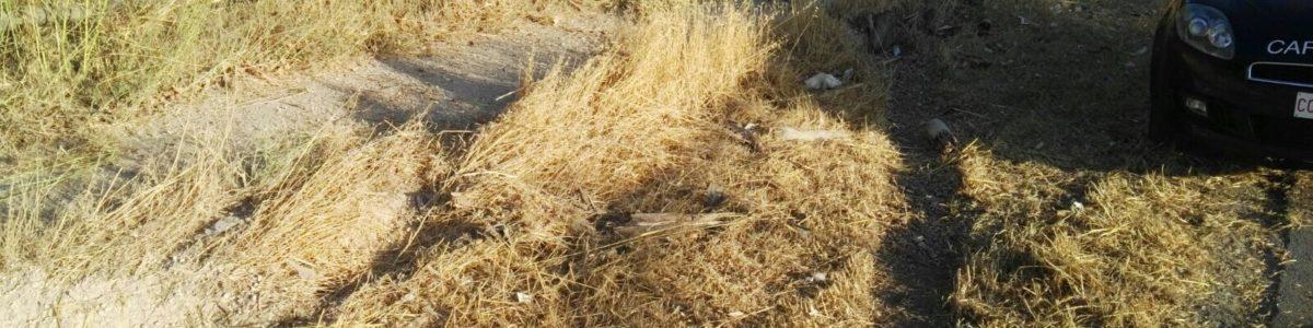 """Battipaglia: confiscato il villaggio """"Iris"""""""