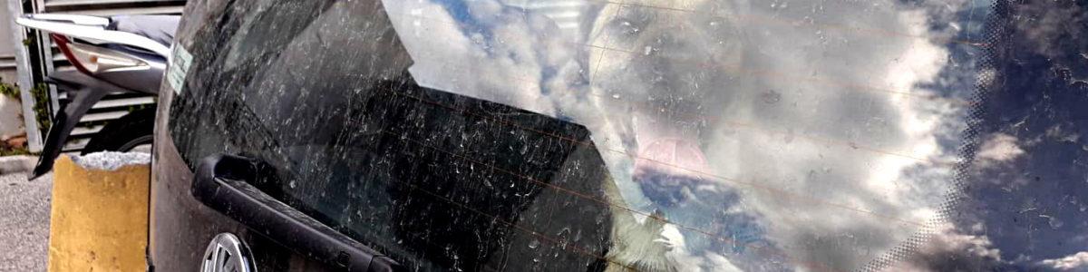Chiuso in un'auto sotto il sole, cane salvato a Salerno
