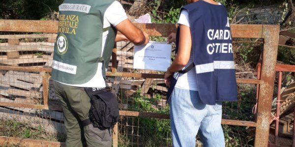 Sversamenti nel Fiume Sele e Calore, sequestrate due aziende bufaline